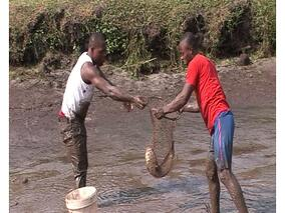 Missio_1660_Cameroon_FishFarmers