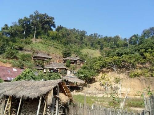 tribalhills